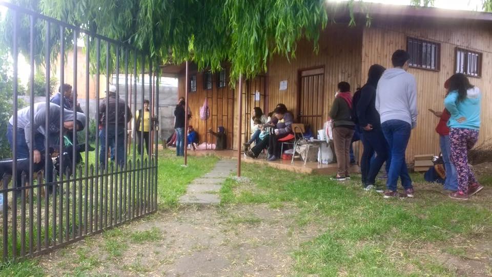 Exitoso operativo de esterilización y castración de mascotas en Olivar