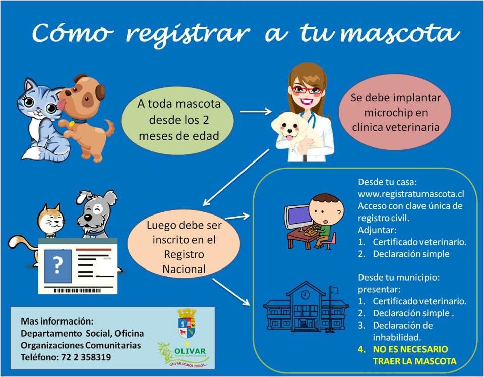 Habilitada plataforma municipal de inscripción de mascotas