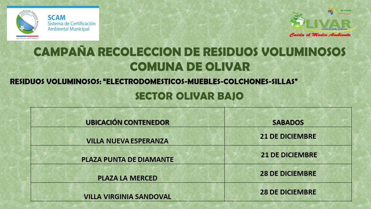 Municipalidad de Olivar impulsará retiro de enseres en desuso