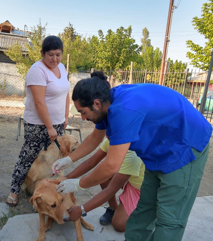 Plan de Tenencia Responsable en Olivar realiza operativos de desparasitación externa